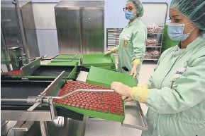 ?? PHOTOGRAPH: VINCENZO PINTO/AFP/GETTY ?? ▲ Filling and packing of AstraZeneca vaccines at a factory in in Italy last year
