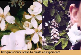 ??  ?? Enrique's work seeks to create an experience