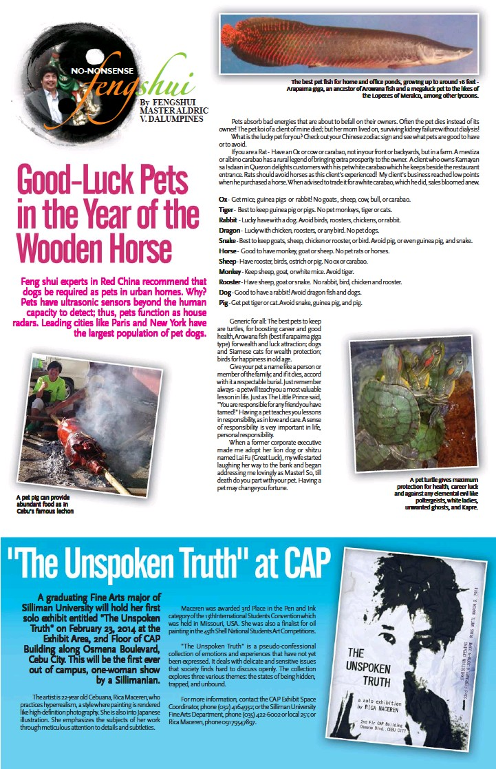 Good Luck Pets In The Year Of The Wooden Horse Pressreader