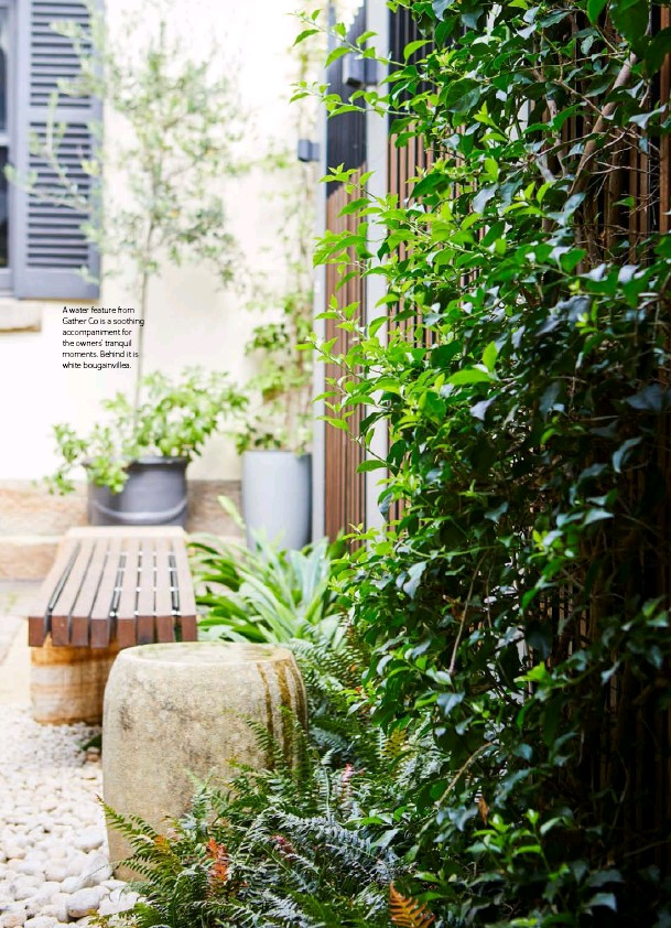 ??  ?? A water feature from Gather Co is a soothing accompaniment for the owners' tranquil moments. Behind it is white bougainvillea.