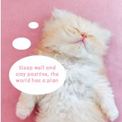 ??  ?? Sleep well and stay positive, the world has a plan