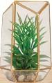??  ?? A touch of greenery Succulent terrarium (23cm H) R349, @home