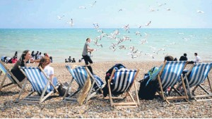 ?? Picture: PA. ?? Seagulls flock near tourists on the seafront in Hove, East Sussex.