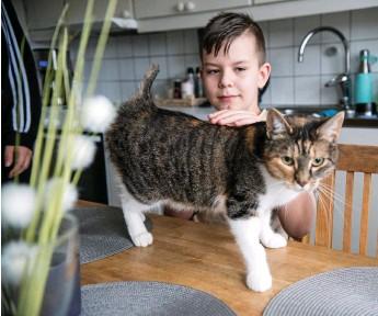 ?? Bilder: Jenny Schagerlind ?? Nioårige Noahs katt Holly har blivit misshandlad av en djurplågare så svårt att svansen behövt amputeras.