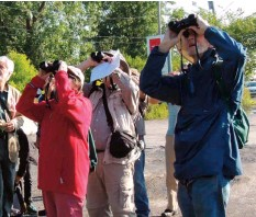 ??  ?? Was that a yellow warbler? Birdwatchers quickly look up.©John Symon