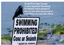 """??  ?? """"A sign from Sligo County Council declared 'Swimming Prohibited' and it seemed to have its own enforcer by way of a scowling crow perched above."""""""
