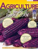 ??  ?? PUR­PLE CORN is on the cover of the March 2017 is­sue of Agri­cul­ture Mag­a­zine which will be off the press soon. A va­ri­ety that was planted as early as 4,000 years ago by the Peru In­cas, it is now be­ing in­tro­duced in the Philip­pines be­cause it is sup­posed to pro­vide many health ben­e­fits.