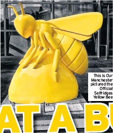 ??  ?? This is Our Manchester pictured the Official Selfridges Yellow Bee
