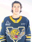 ?? CONTRIBUTED ?? Defenceman Sean Larochelle was acquired by the Cape Breton Eagles from the Victoriaville Tigres on Wednesday.