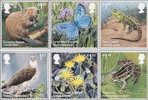 ??  ?? The new set of stamps which feature wildlife successfully reintroduced in the wild after facing extinction.