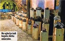 ??  ?? Na ogled je tudi bogata zbirka mineralov.