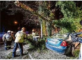 ??  ?? Viele Autos sind von umkippenden Bäumen begraben und demoliert worden.