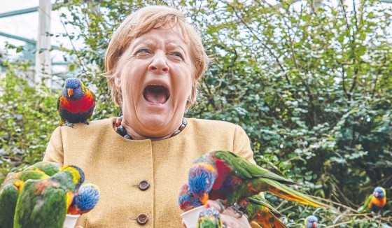 ?? ?? German Chancellor Angela Merkel reacts as she feeds lorikeets at the Bird Park in Marlow, northern Germany. Picture: AFP