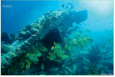??  ?? Right: Beau­ti­ful co­ral reef seascape in Alacranes reef full of life.