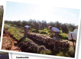 ??  ?? Construcción de muretes de piedra seca