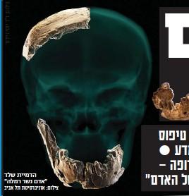 """??  ?? הדמיית שלד """"אדם נשר רמלה"""" צילום: אוניברסיטת תל אביב"""