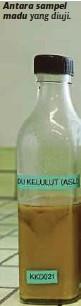 ??  ?? Antara sampel madu yang diuji.