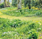 ??  ?? i Flower power: consider leaving part of the lawn unmown