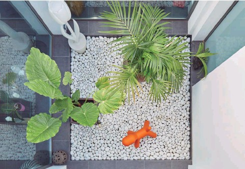 ??  ?? El patio interior, de medidas 3x3 metros, genera un filtro entre el recibidor principal y el exterior desde donde se contempla la gran piscina que dispone del mismo eje. La luminosidad del patio y la continuidad de la piscina constituyen el eje principal de la casa. El perrito es el modelo Puppy de Magis.