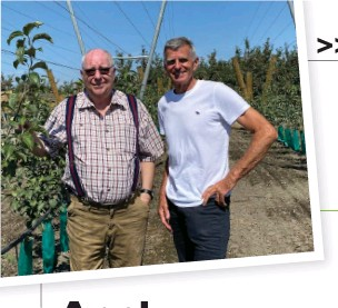 ??  ?? Lynnell Brandt, president Property Variety Management, and John Morton NZ Fruit Tree Company, with young plantings of Cosmic Crisp near Hastings, grown using a V-training system.