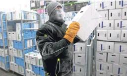 ?? MIKE DE SISTI/USA TODAY NETWORK ?? Kenny Jolliff, a freezer operator, picks orders of frozen bacteria cultures inside a super freezer at Chr Hansen in New Berlin, Wis.