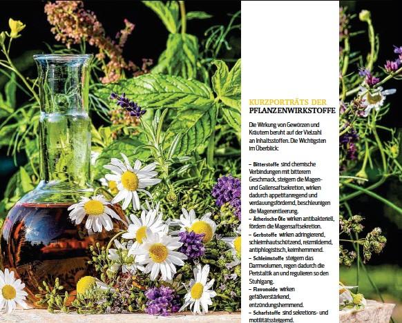 PressReader - Kurier Magazine - Magen-Darm: 2018-06-27