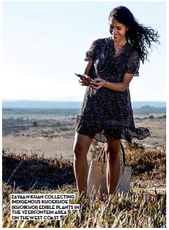 ??  ?? zayaan Khan Collecting indigenous Khoekhoe (Khoikhoi) edible plants in the yzerfontein area on the west Coast