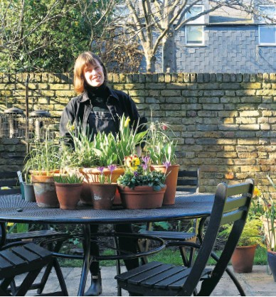 ??  ?? iAlice Vincent, above, in her new back garden where her burgeoning collection of spring pots, far right, can be displayed on an outdoor table