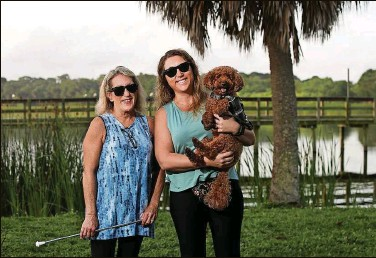 """?? DIRK SHADD 