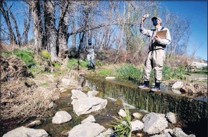 ?? WATCHARA PHOMICINDA — STAFF PHOTOGRAPHER ?? Biologists Kai Palenscar, right, and Chris Jones of the San Bernardino Valley Municipal Water District survey Sunnyslope Creek at the Louis Robidoux Nature Center in Jurupa Valley on Feb. 18. The water district has a new conservation plan for the Upper Santa Ana River.