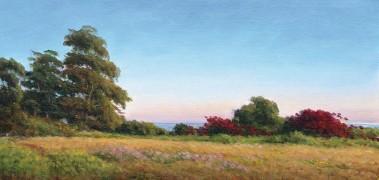 "??  ?? Early Summer Evening, Douglas Preserve, oil, 8 x 16"""