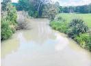 ??  ?? The murky coloured water in the Uretara River last Thursday.