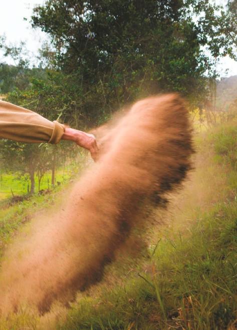 ??  ?? Fuerza del campo La fuerza de los campesinos va más allá de lo físico. Claudia Ruiz capturó este momento mientras uno de ellos esparcía abono sobre la tierra e implementaba sistemas silvopastoriles en su predio.