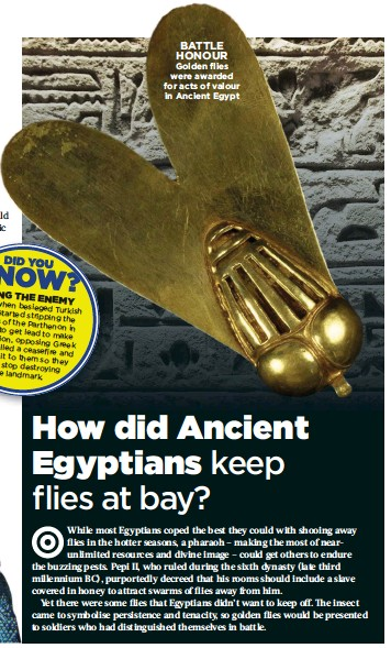 ??  ?? BATTLE HONOUR Golden flies were awarded for acts of valour in Ancient Egypt