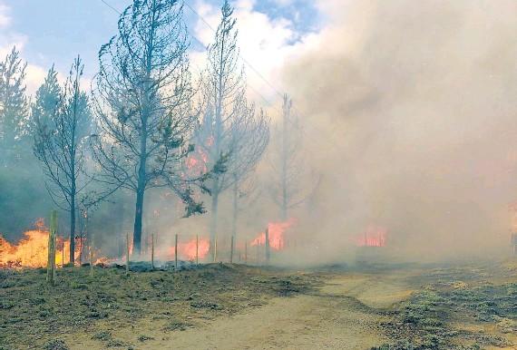 ?? NA ?? Los incendios en El Bolsón no están controlados y hay temor de que el calor empeore la situación.