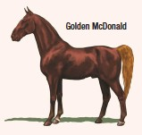 ??  ?? Golden McDonald