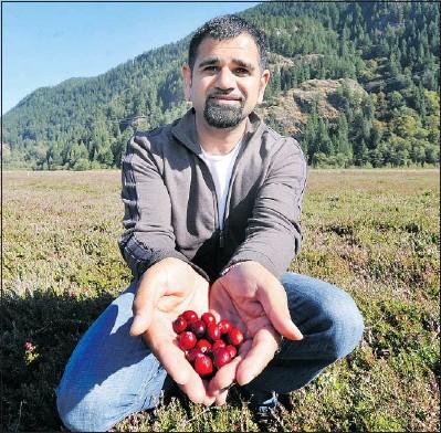 Pressreader The Province 2012 10 05 Sunshine Leaves Farmers Beaming