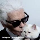 ??  ?? Instagram Choupettesdiary