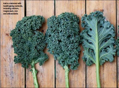 ??  ?? Kail is crammed with health-giving nutrients, including calcium, magnesium, iron and anti-oxidants