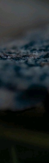?? FOTO: PETRI KAPANEN/LAJI.FI ?? Mörker är en bristvara i sommarnatten, men livsviktigt för vissa djur, Om vi minskar på ljusföroreningen kan vi hjälpa hanen av stor lysmask att hitta en hona och föröka sig. Lysmasken är en riktig nyttoinsekt då larverna äter sniglar och snäckor som annars kalasar på trädgårdslandet.