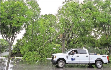 ?? Photos by CHRIS URSO | Times ?? A truck maneuvers around fallen tree limbs in Palm Harbor on Sunday. A line of severe thunderstorms brought gusty winds and several inches of rain around the Tampa Bay area, with damage reported in multiple counties.
