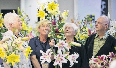 ?? PHOTO: GERARD O'BRIEN ?? Lily lovers . . . Admiring a lily at the Otago Lily Society show at Forbury Park Raceway on Saturday are (from left) society secretary Margaret Dodds, president Louise Ardley and treasurer Margaret Matthews, all of Dunedin, and society member Des Paulson, of Timaru. Below: 1. Candy Club; 2. White Triumph; 3. Orienpet; 4. Henryii via Citronella.
