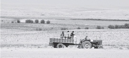 ?? AFP/GETTY IMAGES ?? More than a million Syrian farmers moved to cities as a result of droughts between 2007 and 2010, fuelling political instability that led to the ongoing civil war.