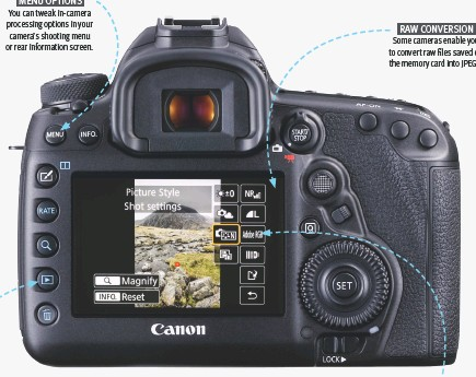 how to convert raw to jpeg in canon camera