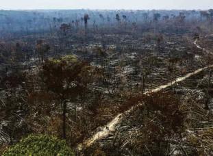 ?? Lalo de Almeida - 20.ago.20/folhapress ?? Desmatamento no município de Apuí, no sul do Amazonas; Plano Amazônia, do governo federal, prevê prioridade de ações na região