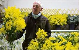 ??  ?? Bernard Vial dans son atelier de confection de bouquets. Il ne pratique que la vente directe. La priorité de la famille, c'est de produire de la qualité !