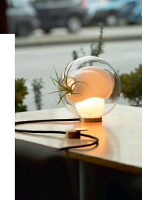 """??  ?? 5. SEE THE LIGHT Look for multifunctional lamps to minimise clutter in your room; these can also incorporate green elements. For instance, the Bocci 38V table lamp from Space Furniture features interior cavities that can be filled with plants. """"A lamp from Bocci with room for an air plant can subtly reinforce the natureinspired theme without the need to overcrowd the room with potted plants,"""" says Tay."""