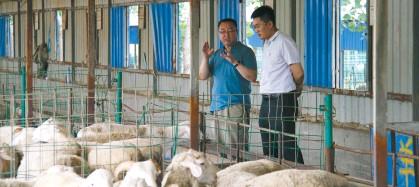 ??  ?? 农行客户经理深入饶阳县带贫企业了解金融需求