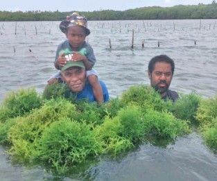 ?? Photo: Ministry Of Fisheries ?? With the increasing demand for seaweed and it's by-products, the ministry will be supporting 14 potential sites in the Central, Northern and Western Divisions in this new fiscal year.