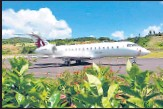 ?? ANI ?? The aircraft chartered by India in Dominica.